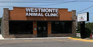 Westmonte Animal Clinic